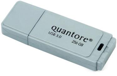 USB-stick 3.0 Quantore 256GB zilver