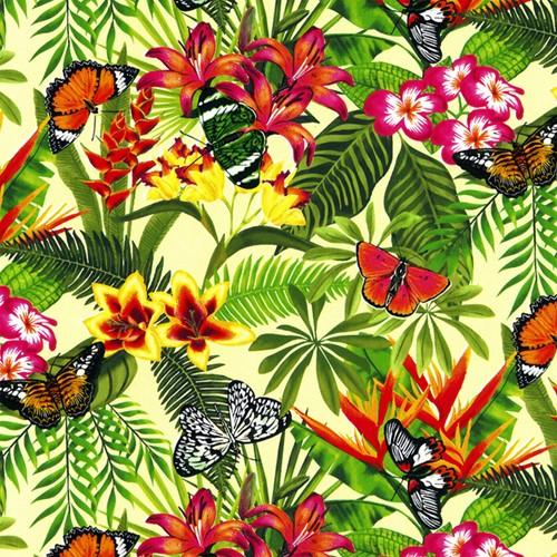 Apparaatrol vlinder 200mx50cm