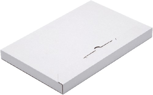 Brievenbusbox Budget A6 165x120x29mm karton wit