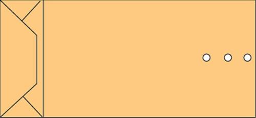 Envelop Quantore monsterzak 100x245x40mm bruin 250stuks